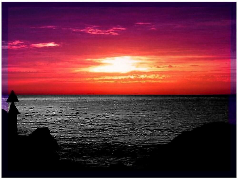 Purple Geraldton by Gozza