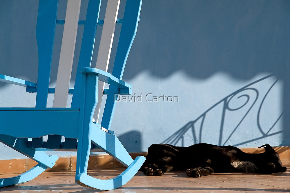 Sleeping dog & rocking chair, Cuba by David Carton