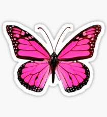 Hot Pink Butterfly  Sticker
