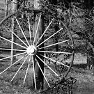 Big Wheel by Linda Yates