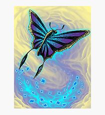 Butterfly with stained glass wings Photographic Print