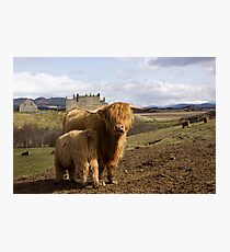 Highland County Photographic Print