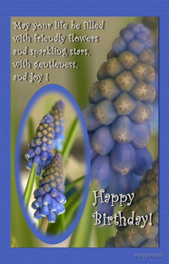 Friendly little flowers - birthday card by steppeland