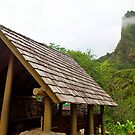 Iao Valley State Park Study 14  by Robert Meyers-Lussier