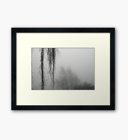 Hanging Branches In The Fog Framed Print