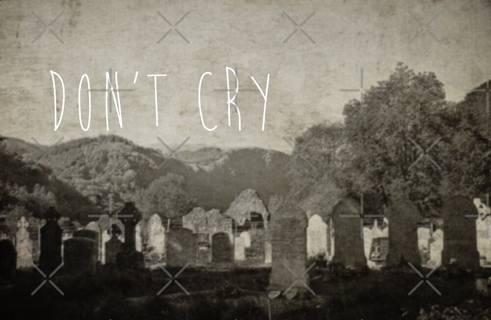 Don't Cry by Denise Abé