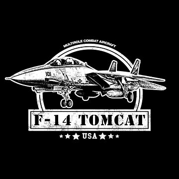 F-14 Tomcat Fighter Aircraft by RycoTokyo81
