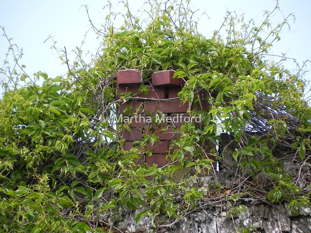 Chimney Greenery by Martha Medford