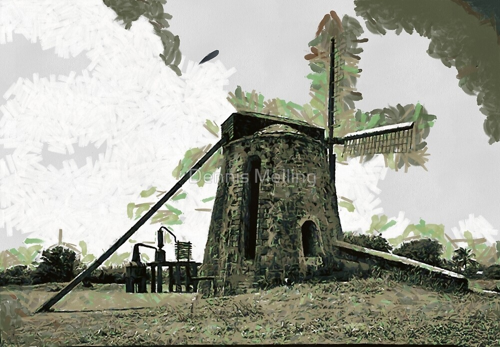The ruins of  Estate Whim Wind Mill, St. Croix, Virgin Islands by Dennis Melling