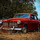 Abandoned Volvo by Hugster62