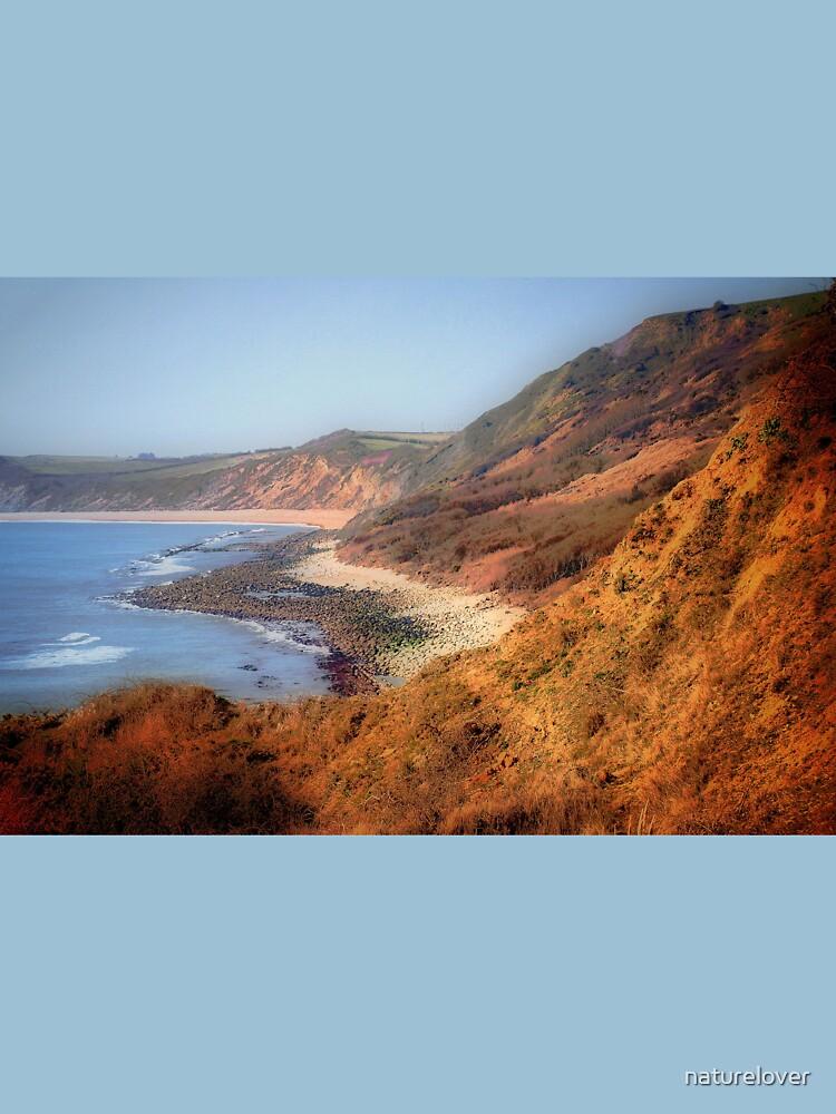 Westward Ho-Jurassic Coast by naturelover