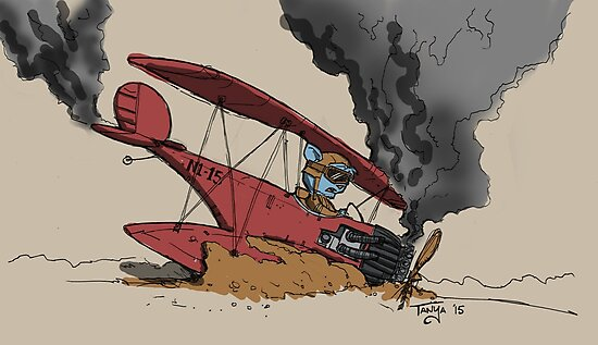 Landing by Tanya  Beeson