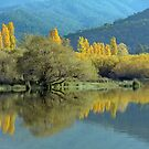 Reflections in a Lake by Bevellee