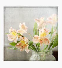 Freesias in Glass Jar Photographic Print