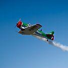 Flying Lion – ZU-BEU by RatManDude