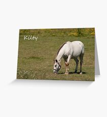 Kilty - NNEP Ottawa, Ontario Greeting Card