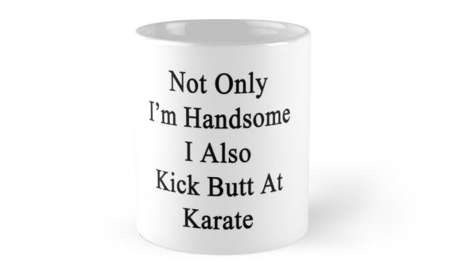 Not Only I'm Handsome I Also Kick Butt At Karate  by supernova23