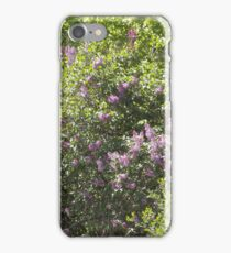 Lilac Explosion iPhone Case/Skin