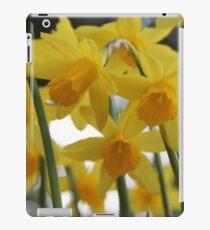 Golden Spring iPad Case/Skin