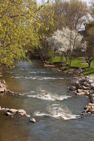 Mill Cteek in Spring - Dexter, Michigan by Robert Kelch, M.D.