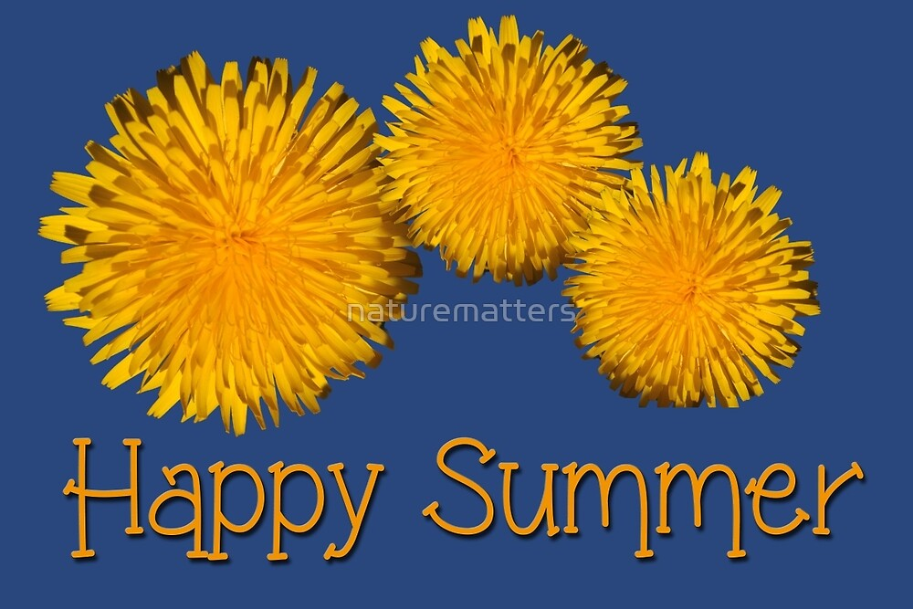 Three lovely summer sunny yellow daisy flowers in dark blue happy summer photo art. by naturematters