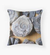 ammonites and belamnites Throw Pillow