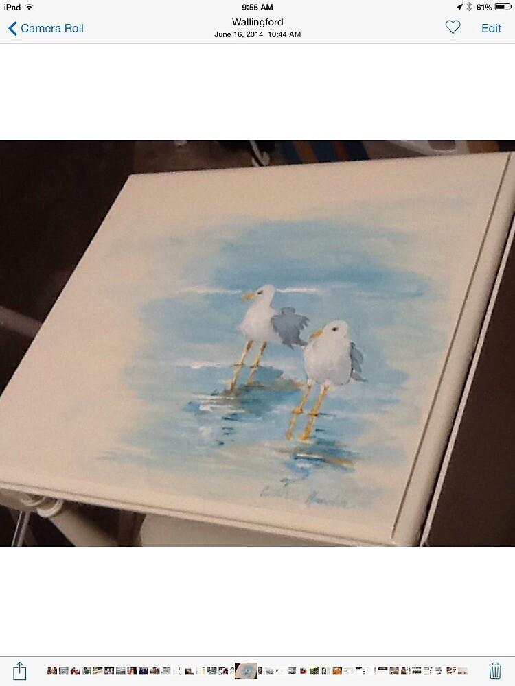 Sea gulls in Milford by Cathy Amendola