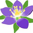 wundervolle violette Blumen, lila Blüten von rhnaturestyles