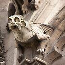 Gargoyle by christymcnutt