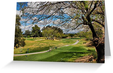 Golf Course View by Barbara Manis