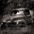 Old Soul by Gregory Collins