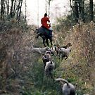 Woodland Horse and Hounds by knelstrom
