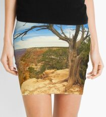 """South Rim"" Mini Skirt"