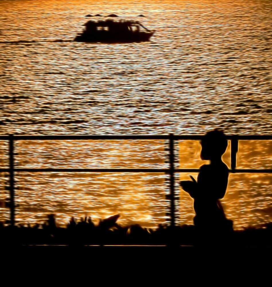 Watching the Sunset by photosbypamela