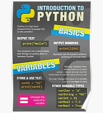 Intro to Python Poster (Computer Science GCSE) #1 Poster