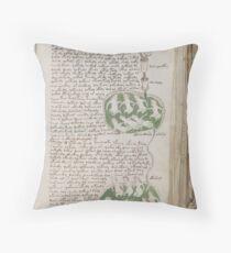 Voynich Manuscript. Illustrated codex hand-written in an unknown writing system Throw Pillow