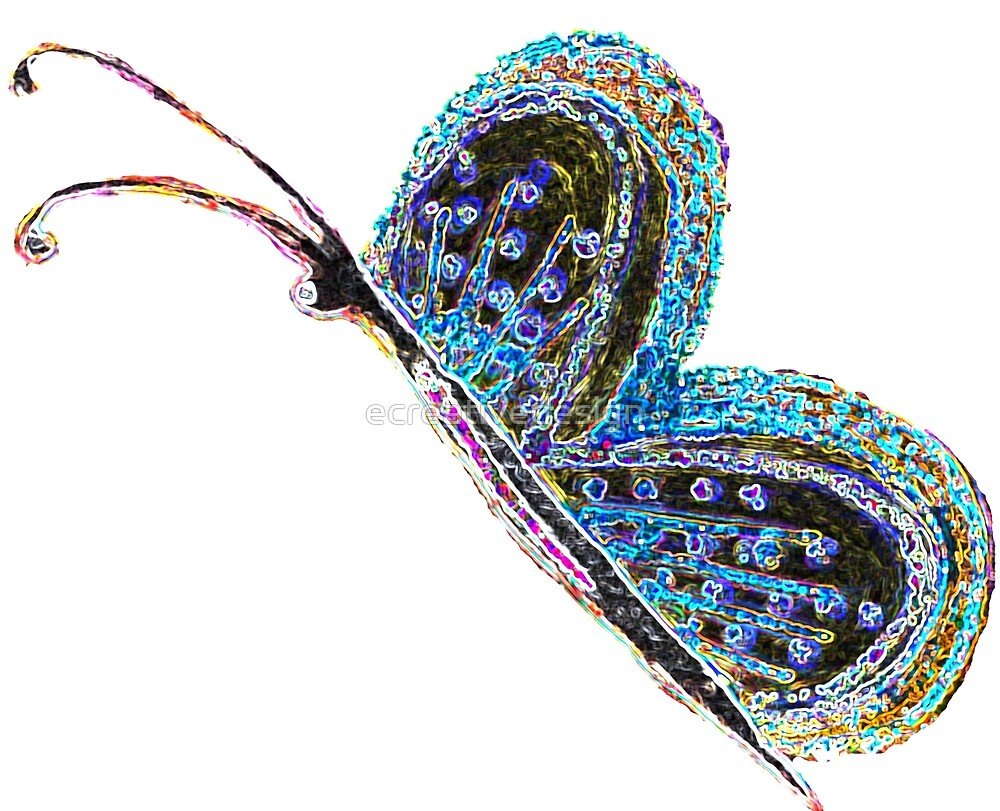 Colorful Butterfly by ecreativedesign