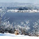 Frosty Fog on the Ohio River by Jeanne Sheridan