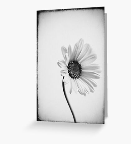 One is one and all alone....... Greeting Card