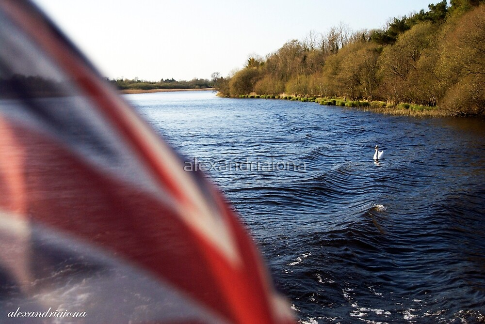 Upper Lough Erne Swan by alexandriaiona