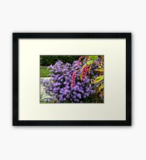 Pink and purple plants Framed Print