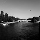 The Seine on a sunny day - Paris by Matteo Pezzi