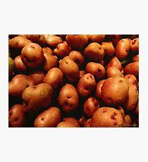 You Say Potato... Photographic Print