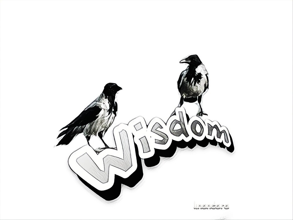 Wisdom - Two wise crows on white background by Linandara