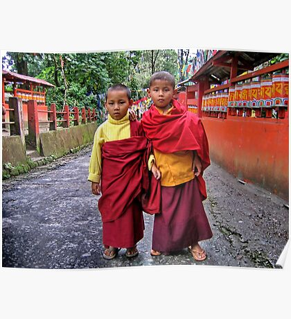 young monks. sikkim, india Poster