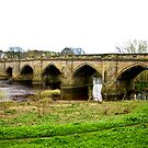 Croft-on-Tees Bridge. by Trevor Kersley