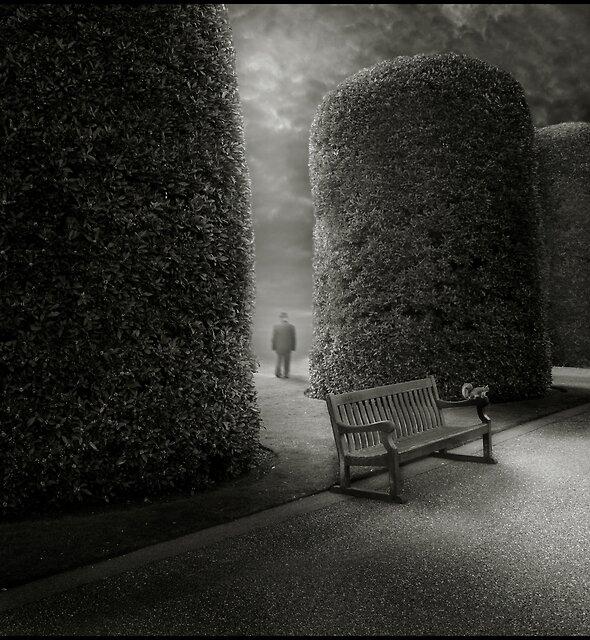 Bench I by Michał Giedrojć