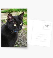Isabella Postcards