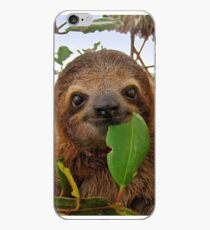 Baby Brown throated Three toed sloth iPhone Case