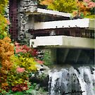Falling Water by anthonycaruso